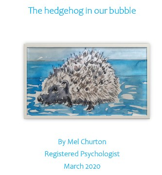 Image of cover of 'The hedgehog in our bubble'