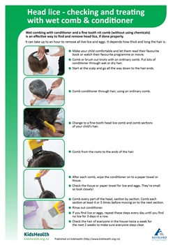Thumbnail image of a handout on head lice