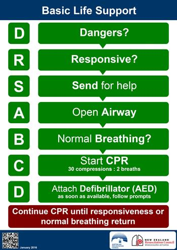 Graphic showing the basic life support steps