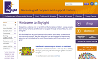 Thumbnail image of skylight website homepage